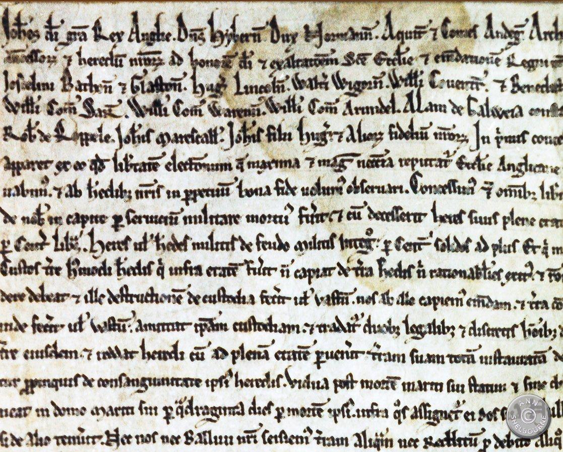 AE_49_7-Magna-Carta-Detail-top-corner.jpg