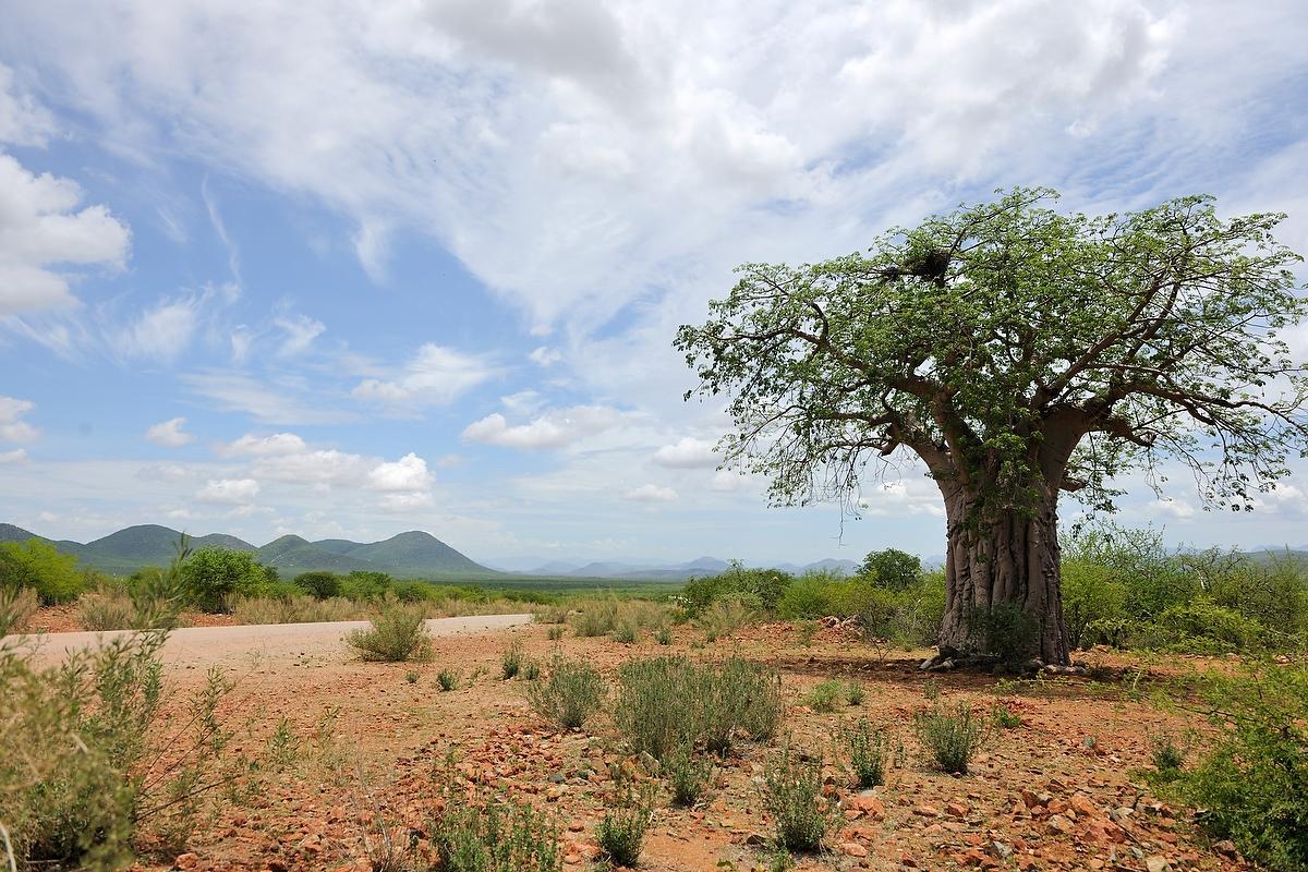 Kaokoland Landscape Near Angola Border Fotozones Members