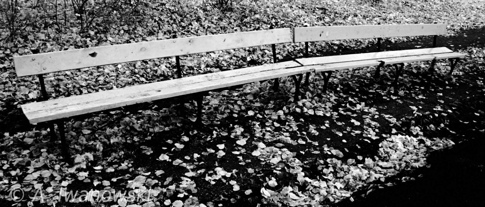 _AND3648 Bench II b&w.jpg