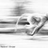 Speeding Baboon.jpg