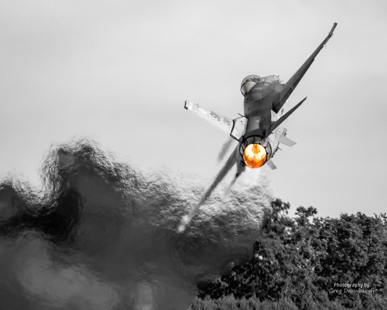 Viper-3.jpg