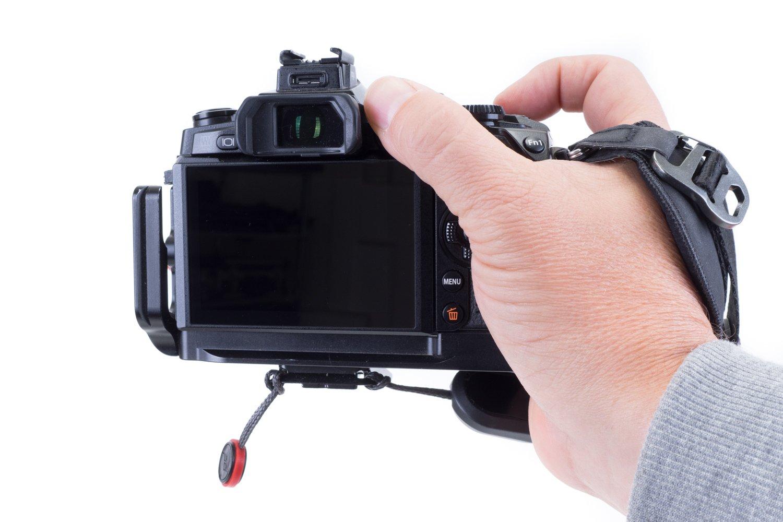 EM1A7100.jpg