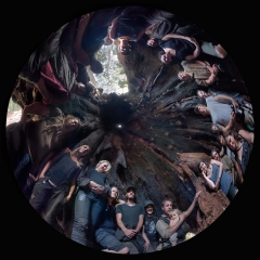 Inside The Weld Hollow Tree
