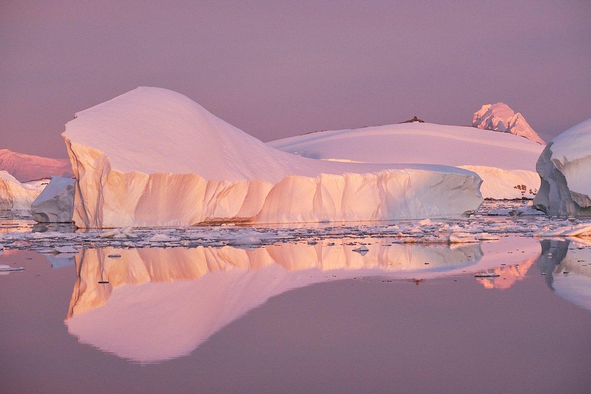 20190122_Antarctica_2061_C1.jpg