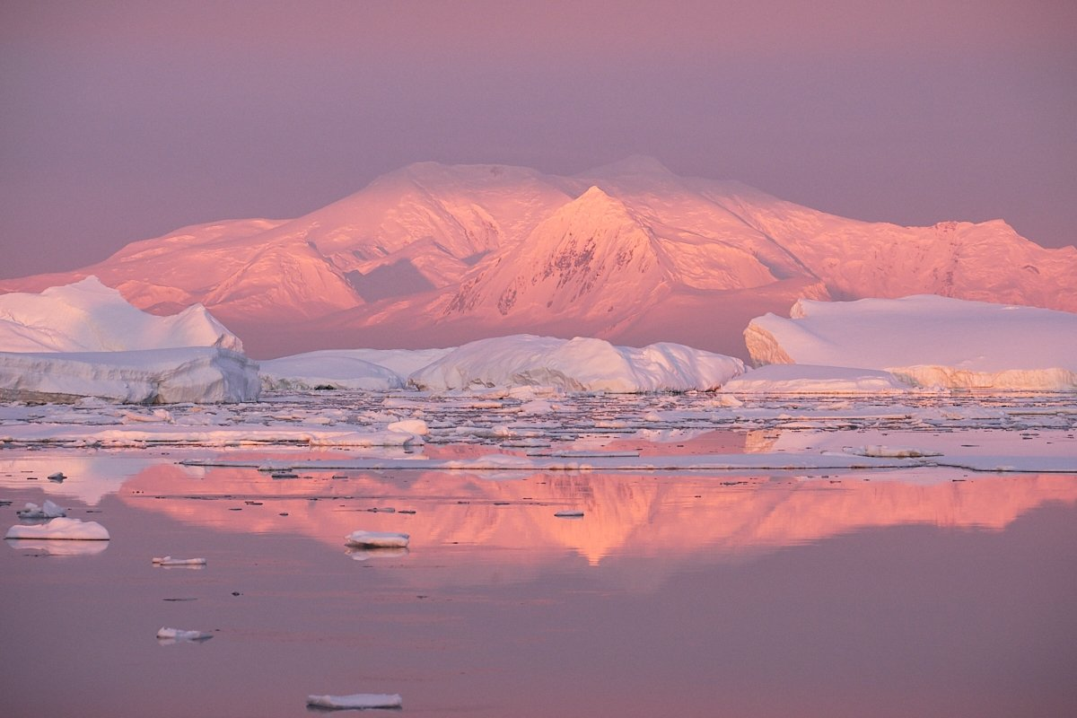 20190122_Antarctica_2063_C1.jpg