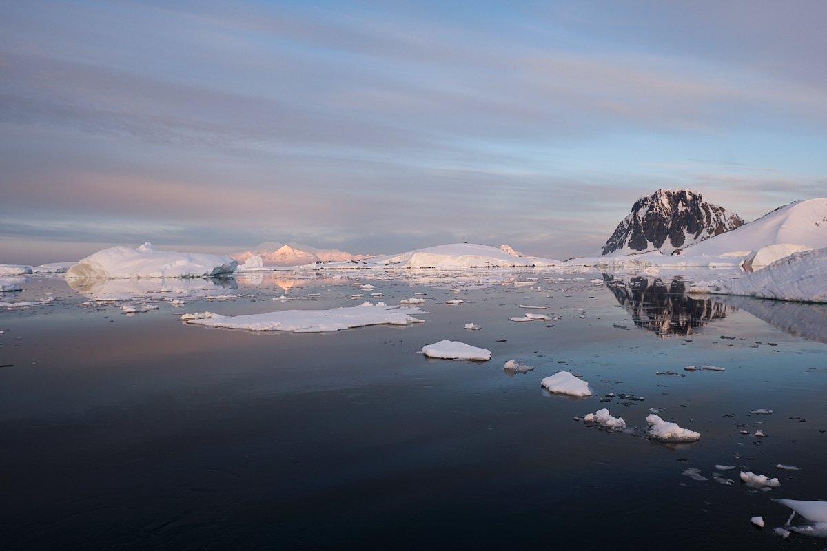 20190122_Antarctica_2868_C1.jpg