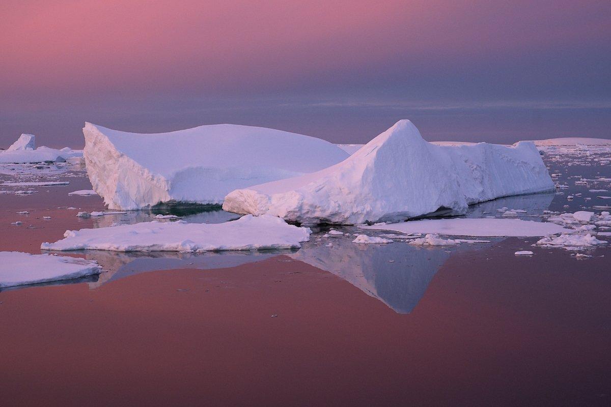 20190122_Antarctica_2923_C1.thumb.jpg.8896f986807d912a3749ca912a635a2c.jpg