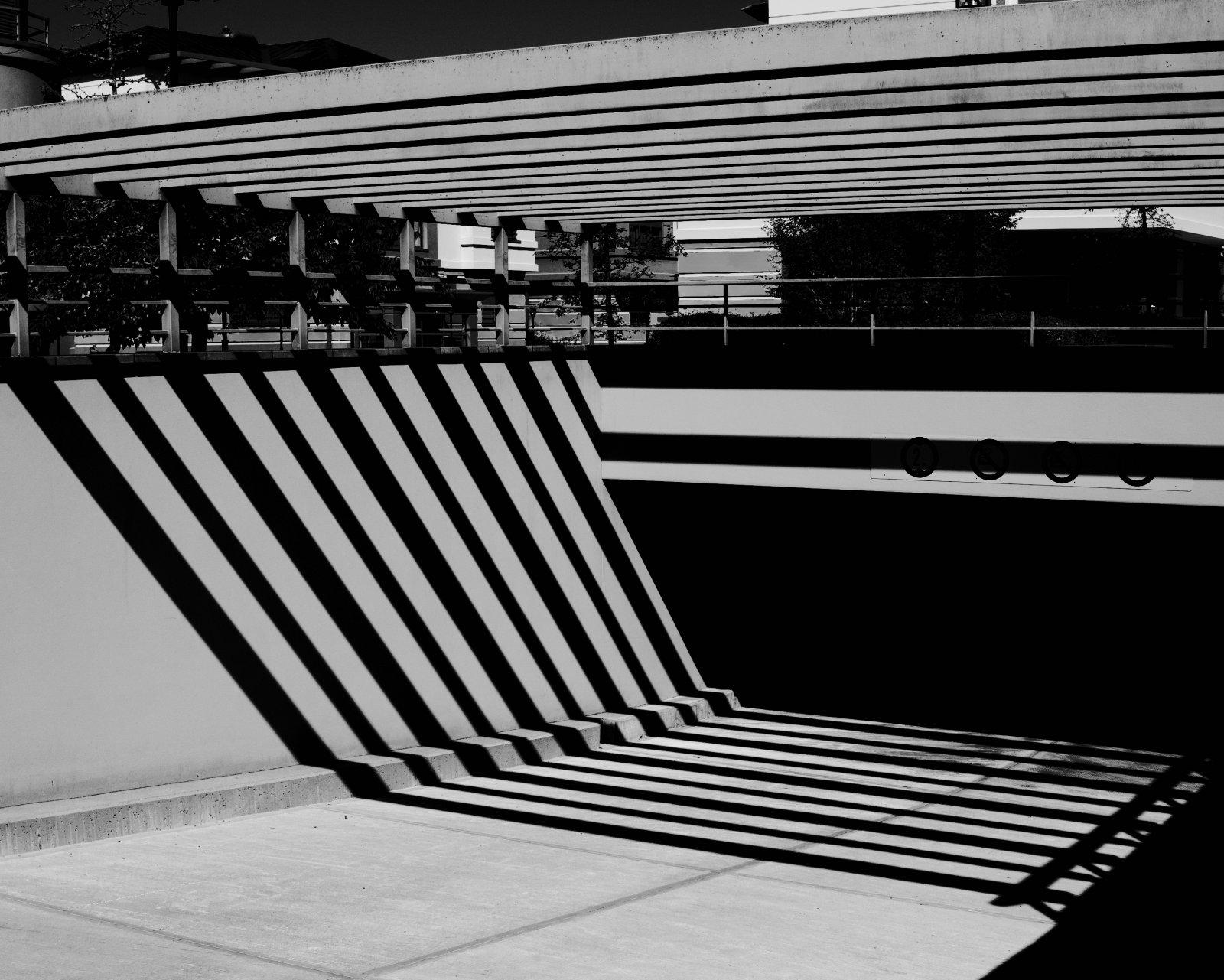 NBetween the lines.jpg