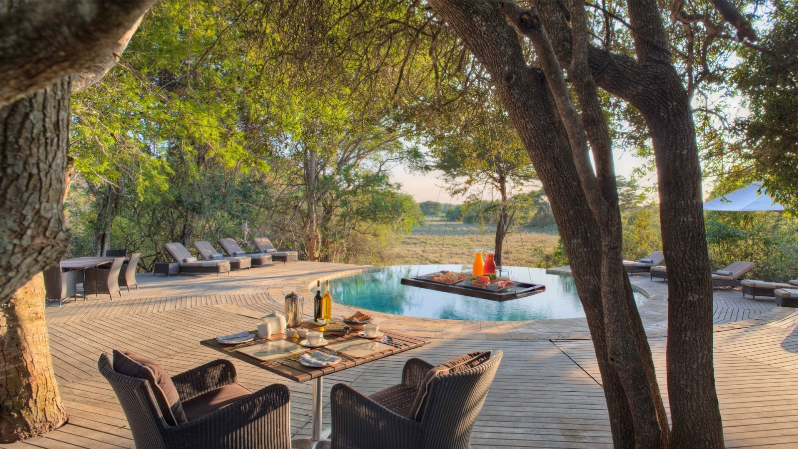 swimming-pool-and-loungers-at-andbeyond-phinda-forest-lodge-on-a-south-africa-safari.jpg