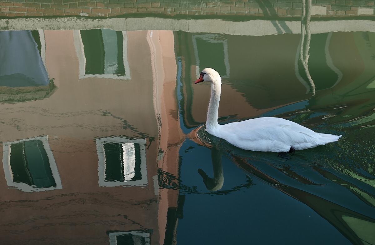 20200916_Venice_1018_C1.jpg