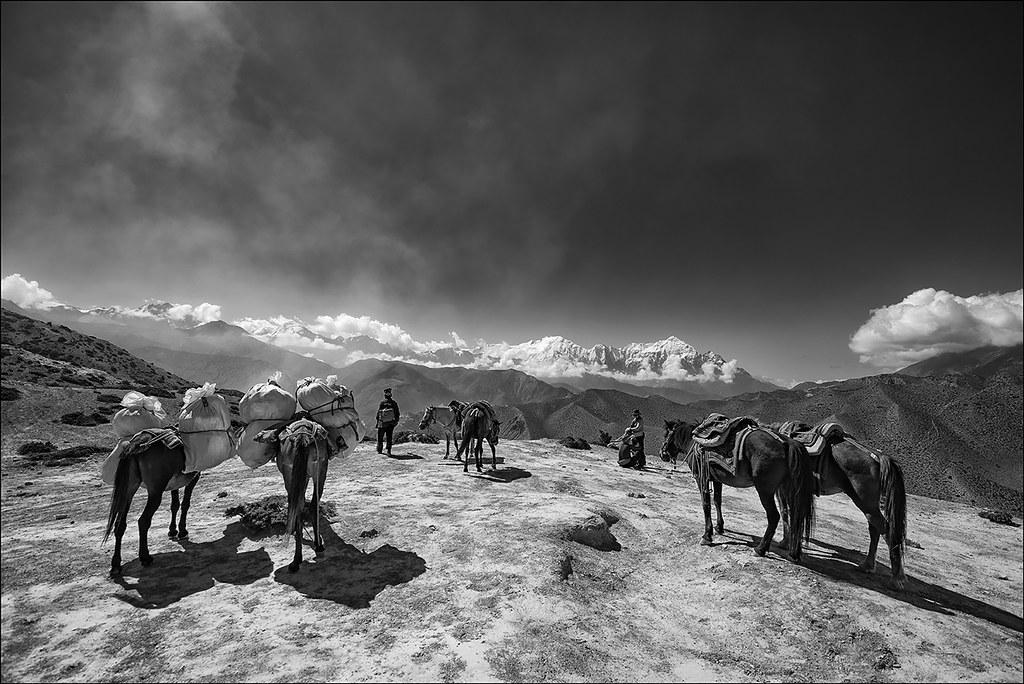 Nilgiri Himal Range